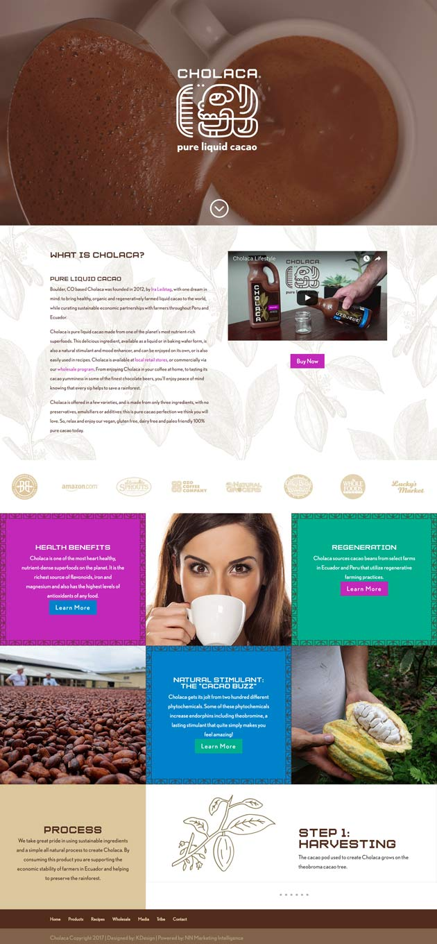 cholacahome  Longmont Website Design Image